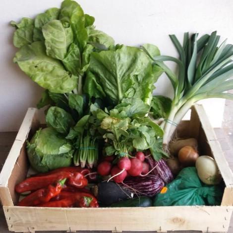 Caja de verdura ecológica...